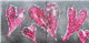 Love Heart Diptych   - Click to see more